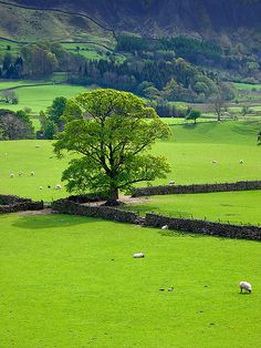 English countryside,
