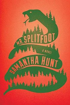 New book review on WKAR. This time I talk about Mr. Splitfoot by Samantha Hunt.   http://sdsouthard.com/2016/03/03/new-wkar-book-review-mr-splitfoot-by-samantha-hunt/