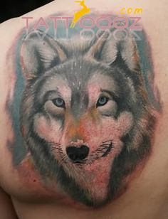 Wolf Tattoos Meaning Designs| Images| Piercing,Wolf Tattoos Meaning Designs| Images| Piercing designs,Wolf Tattoos Meaning Designs| Images| Piercing ideas,Wolf Tattoos Meaning Designs| Images| Piercing Tattooing tattooing,Wolf Tattoos Meaning Designs| Images| Piercing piercing,  more for visit:http://tattoooz.com/wolf-tattoos-meaning-designs-images-piercing/