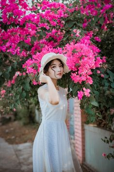 Caring For Your Plant Before Starting Your Own Garden Kaiserslautern, Bougainvillea, Dp For Whatsapp Profile, Whatsapp Dp, Lightroom, Shooting Photo, Small Space Gardening, Gardening Gloves, Gardening Books