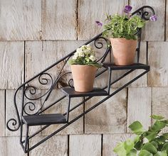 Garden Decor Wrought Iron Flowerpots and Best Decoration Examples