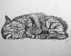 George the Cat
