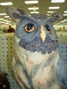 Decorative Owl.  Photo by Frederick Meekins