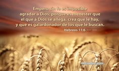 """Los que reciben respuesta a sus oraciones han satisfecho requisitos básicos. Pablo señaló cuáles son estos cuando escribió: """"Pero sin fe es imposible agradar a Dios; porque es necesario que el que se acerca a Dios crea que le hay, y que es galardonador de los que le buscan"""". (Hebreos 11:6.) Note estos dos puntos fundamentales: Jehová contesta las oraciones de 1) los que creen que Dios existe y 2) los que """"le buscan solícitamente""""."""