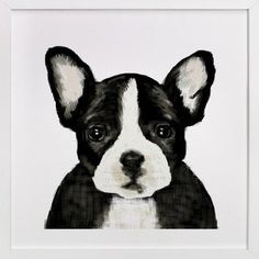 French Bulldog Art Print ($35)