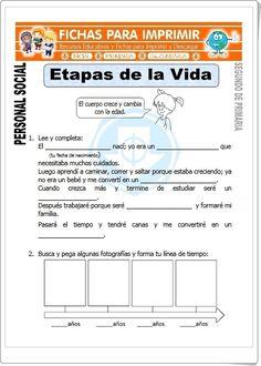 """""""Etapas de la vida"""" (Fichas de Ciencias Naturales de Primaria) Second Grade, Biology, Montessori, Acting, Homeschool, Classroom, Teacher, Science, Education"""