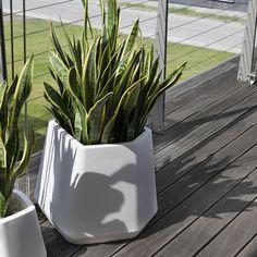 Vasi e Fioriere da interno (Foto 14/42)   Design Mag   fiorire per ...