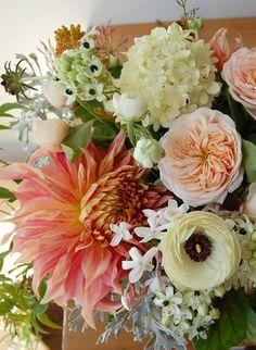 Dahlia bouquet with hydrangea My Flower, Fresh Flowers, Beautiful Flowers, Beautiful Beautiful, Flower Colors, Peach Flowers, Dahlia Flower, Unique Flowers, Beautiful Flower Arrangements