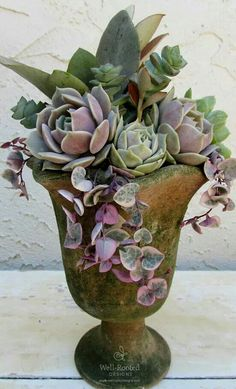 Succulents in a Mossy Urn :: Well-Rooted Designs by Dianne Reese