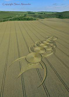 crop circles. Crop circles. Círculos en los cultivos