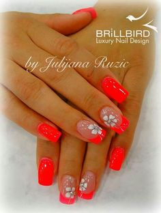 Www.brillbird-ks.co.uk