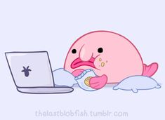 Hashtag Collectibles Süße pink farbige Blobfisch plüsch