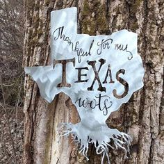 Precision Metal Art home decor Shiny Steel Texas Roots