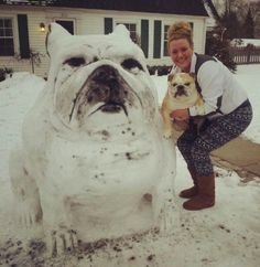 Snow dog replica.  That's awesome.  I wish we got enough snow in NJ for me to make a giant snow animal.