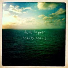 Beauty Beauty - David Brymer