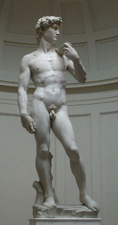 David is a masterpiece of Renaissance sculpture created between 1501 and 1504, by the Italian artist Michelangelo.