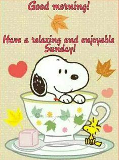 Good Morning Snoopy, Saturday Morning Quotes, Cute Good Morning Quotes, Sunday Quotes Funny, Sunday Humor, Robert Kiyosaki, Tony Robbins, Buenos Dias Quotes, Encouragement