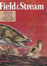 Field and Stream July 1955