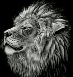 tattoo idea 4