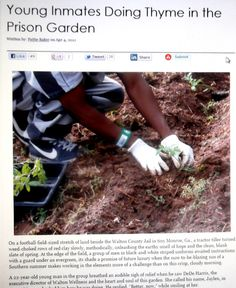 Young Inmates Doing Thyme in the Prison Garden - Juvenile Justice Information Exchange County Jail, Football Field, Success Story, Toolbox, Journalism, Prison, Repeat, Gardens, Website