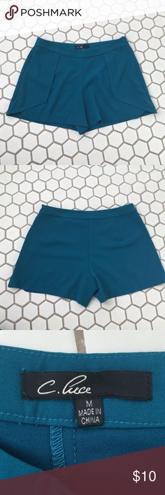 Blue Dress Shorts Purchased from the store 344 in MA. Never been worn!! Great condition. Perfect for day to night wear. Good choice for summer. Shorts
