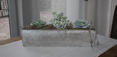 TD115 – Schale aus Beton als Tisch, Sideboard oder Fensterdeko! Schale aus Beton bepflanzt mit künstlichen Sukkulenten! Preis mit Deko 36,90€ Preis ohne Deko 16,90€ Größe 40 x 10 x 8 cm