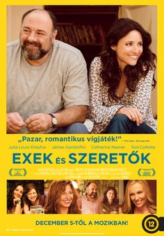 Directed by Nicole Holofcener. With Julia Louis-Dreyfus, James Gandolfini, Catherine Keener, Toni Collette. A divorced woman who decides to pursue the man she's interested in learns he's her new friend's ex-husband. Hd Movies, Movies To Watch, Movies Online, Movies And Tv Shows, Movie Tv, Movies 2014, Film Watch, Movies Free, Movies Showing