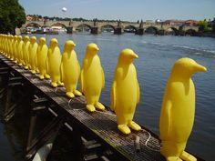 Weird birds in Prague
