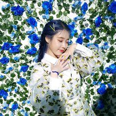 Pin Image by Girlnesia Korean Actresses, Korean Actors, Suzy, K Idols, Korean Singer, Blue Hair, Girl Crushes, Kpop Girls, Album Covers