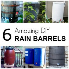Ways To Make Water From Air – Greenhouse Design Ideas Water Plants, Cool Plants, Outdoor Projects, Garden Projects, Garden Ideas, Diy Projects, Water From Air, Water Barrel, Water Collection