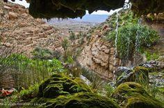 Libya.  THE LIBYAN  Esther Kofod  www.estherkofod.com
