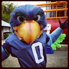 Blitz the Seattle Seahawk mascot. A large blue bird, Blitz made his debut on September 13, 1998 at the Seahawks' home opener at the Kingdome in Seattle, Washington.