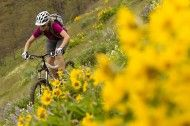 Photo of the Day: Sterling Lorence - Darcy Turenne. Hood River, Oregon. Mountain bike.