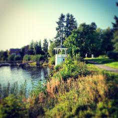 #Summer #Oulu #Finlandia #Countryside