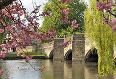 Bakewell, Bridge, Cottage, Derbyshire, It's just missing all of the rubber duckies from the annual race. Beautiful World, Beautiful Places, Chatsworth House, British Countryside, England And Scotland, Peak District, Derbyshire, Beautiful Architecture, British Isles
