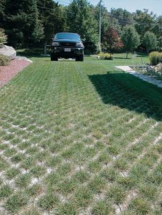 The open-cell concrete grid of this driveway protects roots from compaction, which would eventually kill the grass