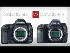 Canon 5D Mark III vs Canon 6D: a sensible buyer's guide. www.motionvfx.com/B3129 #5DMk3 #Canon #6D