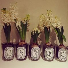 Diptyque jar reuse