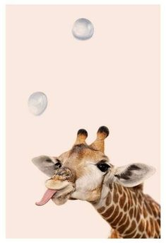* in 2019 - giraffe art, iphone wallpaper en cute an Tier Wallpaper, Animal Wallpaper, Cool Wallpaper, Wallpaper Backgrounds, Iphone Wallpaper, Trendy Wallpaper, Giraffe Art, Cute Giraffe, Baby Giraffes