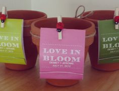 'Love in Bloom' - plant seed matchbook wedding favours attach to terra cotta pots