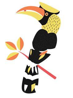 Great bird from Mitch Blunt.