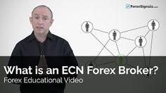 what is an ecn forex broker? [Tags: FOREX BROKER Broker Forex]