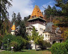 ASES Confort Travel: Castelul Pelișor