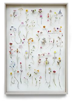Anne ten Donkelaar Flower construction #56 (70 cm x 100cm x 6.5cm)