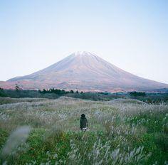 saepphire:  nature + more