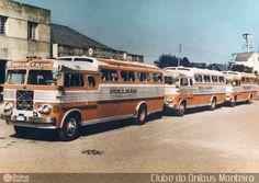 Ônibus da empresa Unesul de Transportes, carro 31, carroceria Eliziário Belveder, chassi Mercedes-Benz LP-331. Foto na cidade de Porto Alegre-RS por Clube do Ônibus Monteiro , publicada em 04/05/2011 18:24:45.