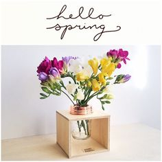 Spring has sprung!  (Flower box by Rainy Sunday - select products on sale now!)