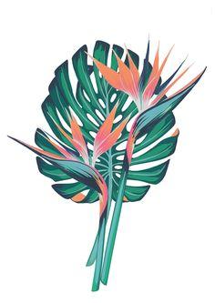 Charlotte Days serene compositions of hand-painted flora and lettering DigiCharlotte Days serene compositions of hand-painted flora and lettering Digital Arts Botanical Fashion, Art Articles, Watercolor Plants, Plant Art, Plant Illustration, Leaf Art, Painting Inspiration, Vector Art, Flora