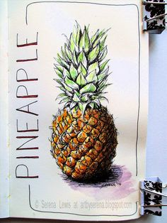 Serena Lewis Art: How to sketch a pineapple Sketchbook Cover, Moleskine Sketchbook, Sketchbooks, Watercolor Journal, Pen And Watercolor, Watercolor Ideas, Pineapple Sketch, Food Sketch, Taking Shape