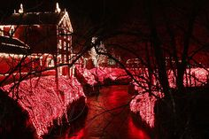 Christmas Lights at Clifton Mill ~ beautiful !